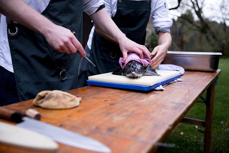 Foodfotografie zeigt Fisch, der gerade auf Ike Jime Art getötet wird